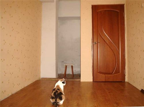 cvet_laminata_pod_dveri_dub,_orex_i_anegri_07